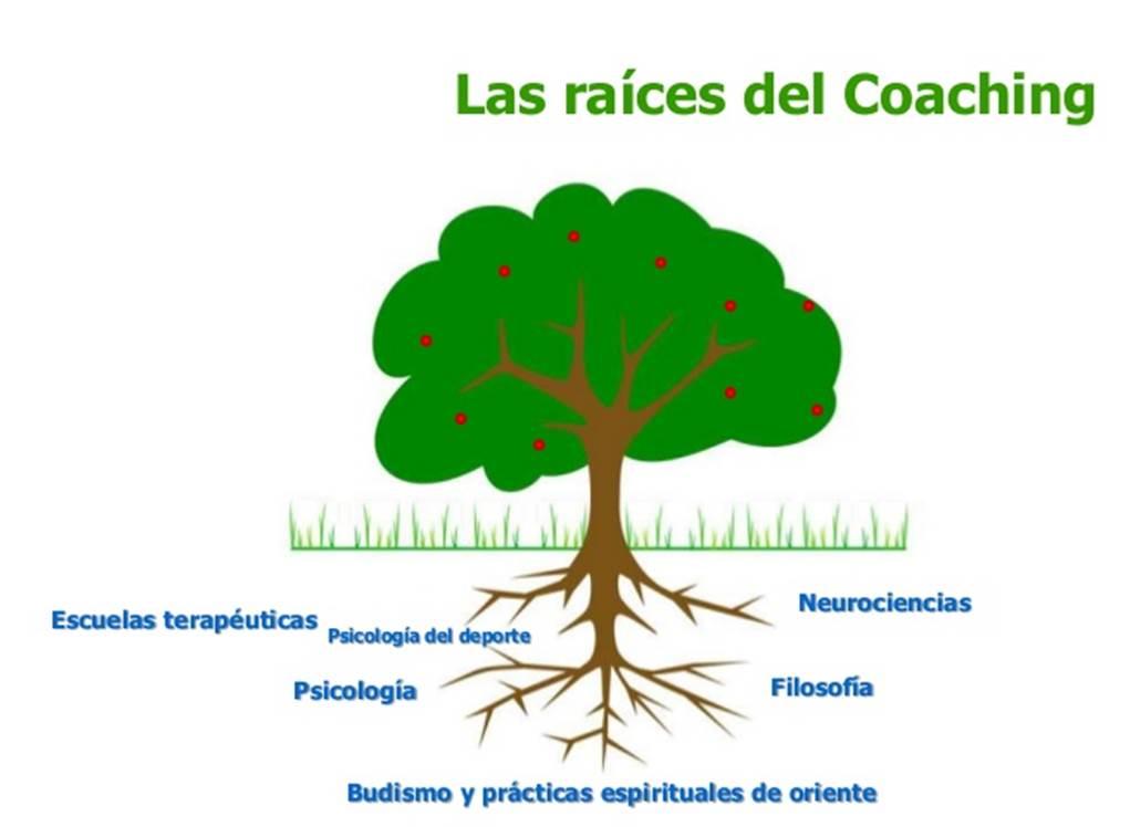 MariteRodriguez-Neurociencia-Neuromarketing-Coach-PNL