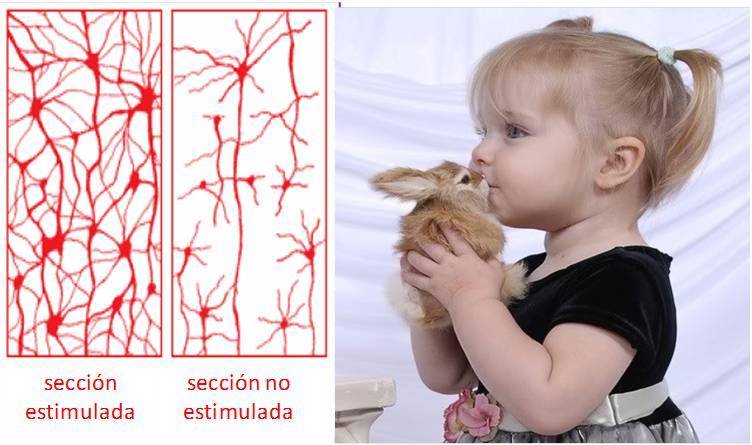 Neuromarketing-Marité-Rodríguez