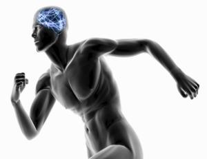 Neurociencia-Ejercicios-Concentración-Marité-Rodríguez